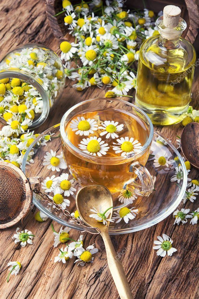 чай ромашки в пакетиках польза и вред